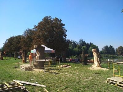 Перший міжнародний скульптурний фестиваль«KORSAK CARVING FEST» стартував у Луцьку
